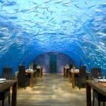 Conrad Rangali Island Maldives Hotel 5