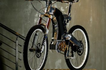 M55 Electric Bike 1