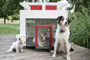 Cubix Luxury Dog Home