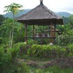 Alila Manggis Bali 4