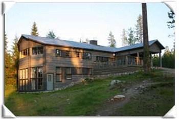 Wild Brown Bear Hotel 2