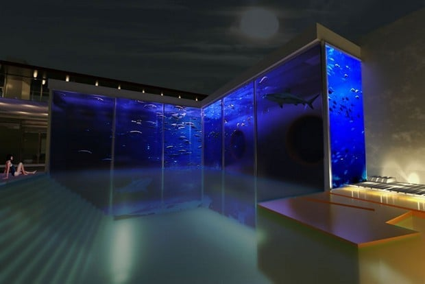 A Bespoke Pool And Aquarium Complex By Okeanos Aquascaping