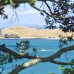 St Heliers Property in New Zealand 9