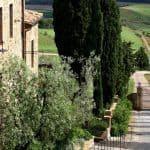 Castello Banfi Il Borgo 7