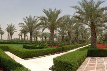 Desert Palm Dubai 01