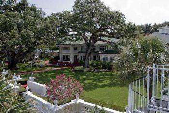 Historic Century Oaks 01