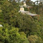 Tsala-Treetop-Lodge 13