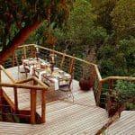 Tsala-Treetop-Lodge 7