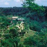Four-Seasons-Resort-Bali-at-Sayan 1