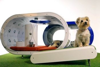 Samsung-Dream-Doghouse-1