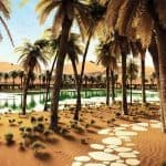 Oasis-Eco-Resort-UAE-4