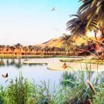 Oasis-Eco-Resort-UAE-6