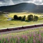 Royal Scotsman train