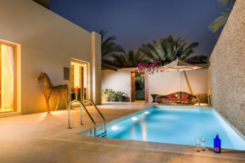 Desert Palm Dubai 18