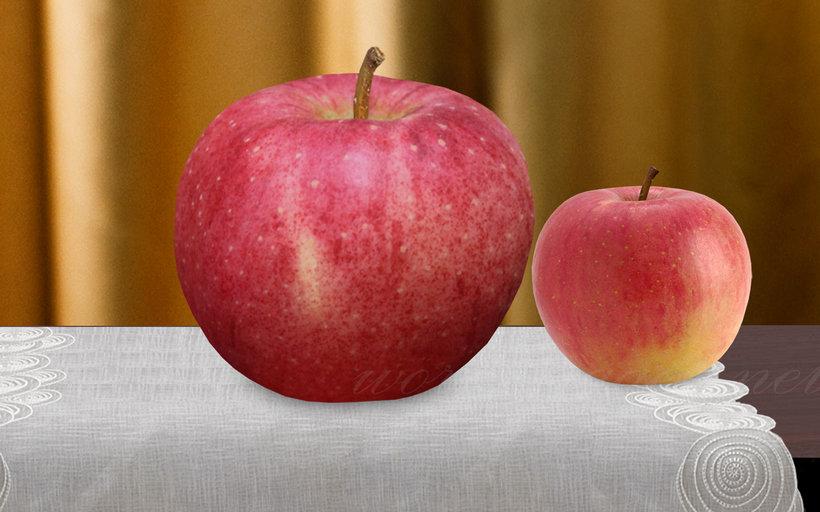 Sekai Ichi Apples