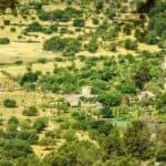 Castell Son Claret 15
