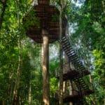 Datai Langkawi Resort 4