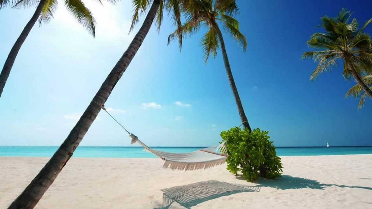 vacation ROI