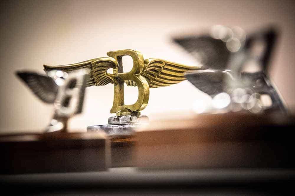 Flying B Mascot 3