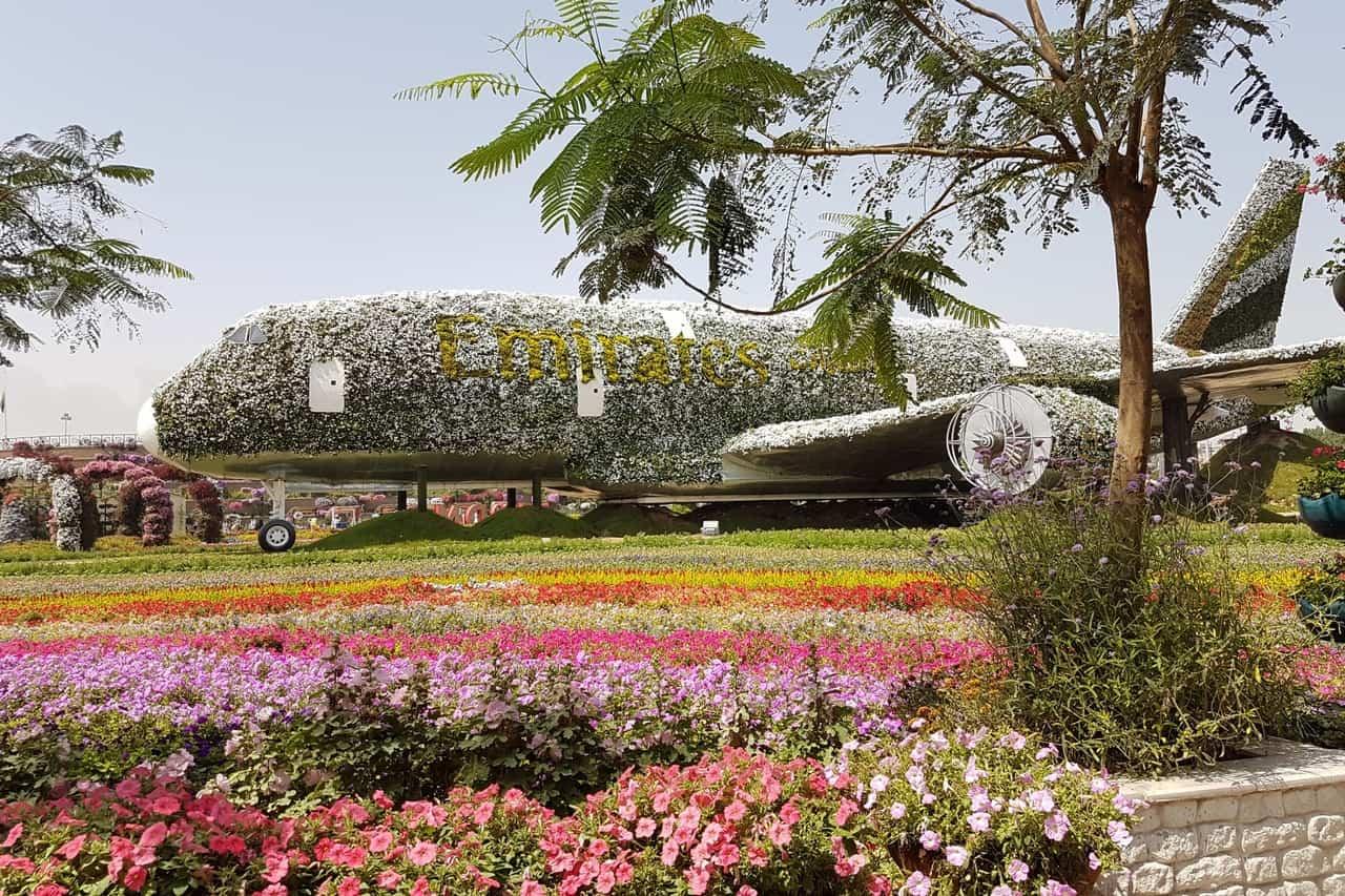 Dubai Flower park