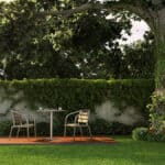 Tips to Transform your Garden 3