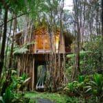 Dreamy Tropical Treehouse Hawaii 1