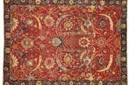 The Clark sickle-leaf carpet