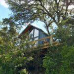 Sycamore Treehouse – Fredericksburg 1