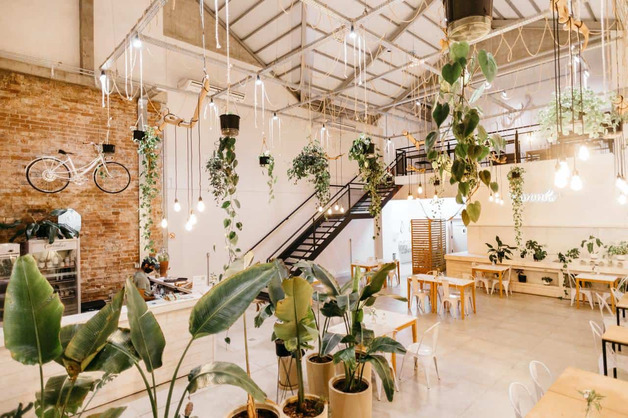 Use plantlife to revitalize a space