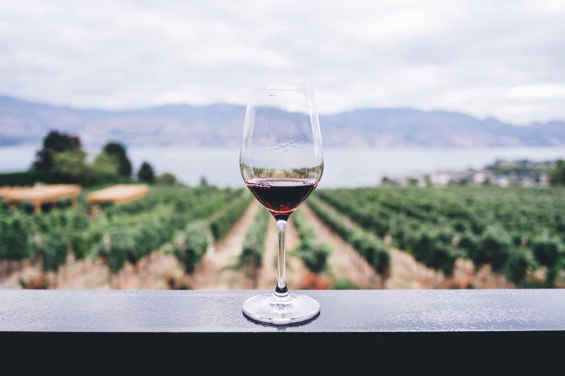 Best Luxury Bordeaux Wine Brands